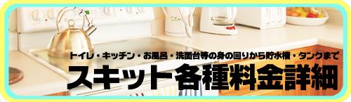 スキット各種料金詳細はこちら!!